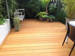 Hardwood Deck 4